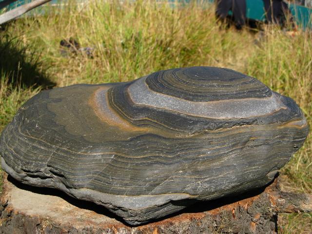new canadian stones Img_1115