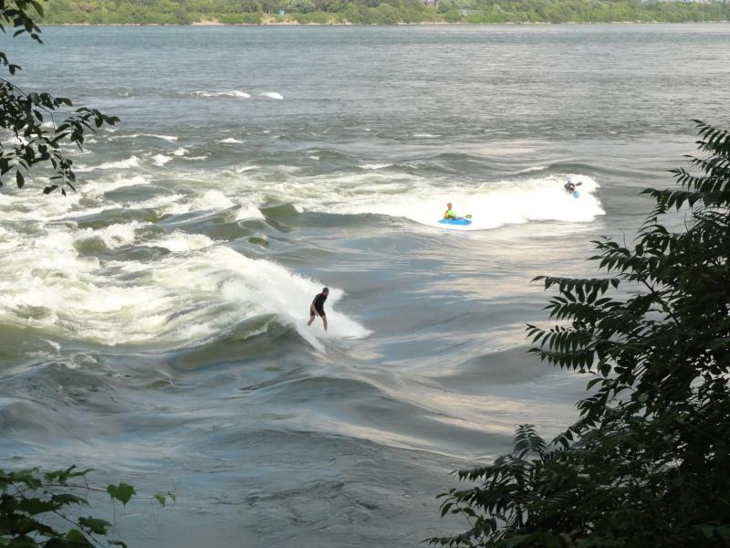 le SUP, est ce du surf ou pas? Dsc01510