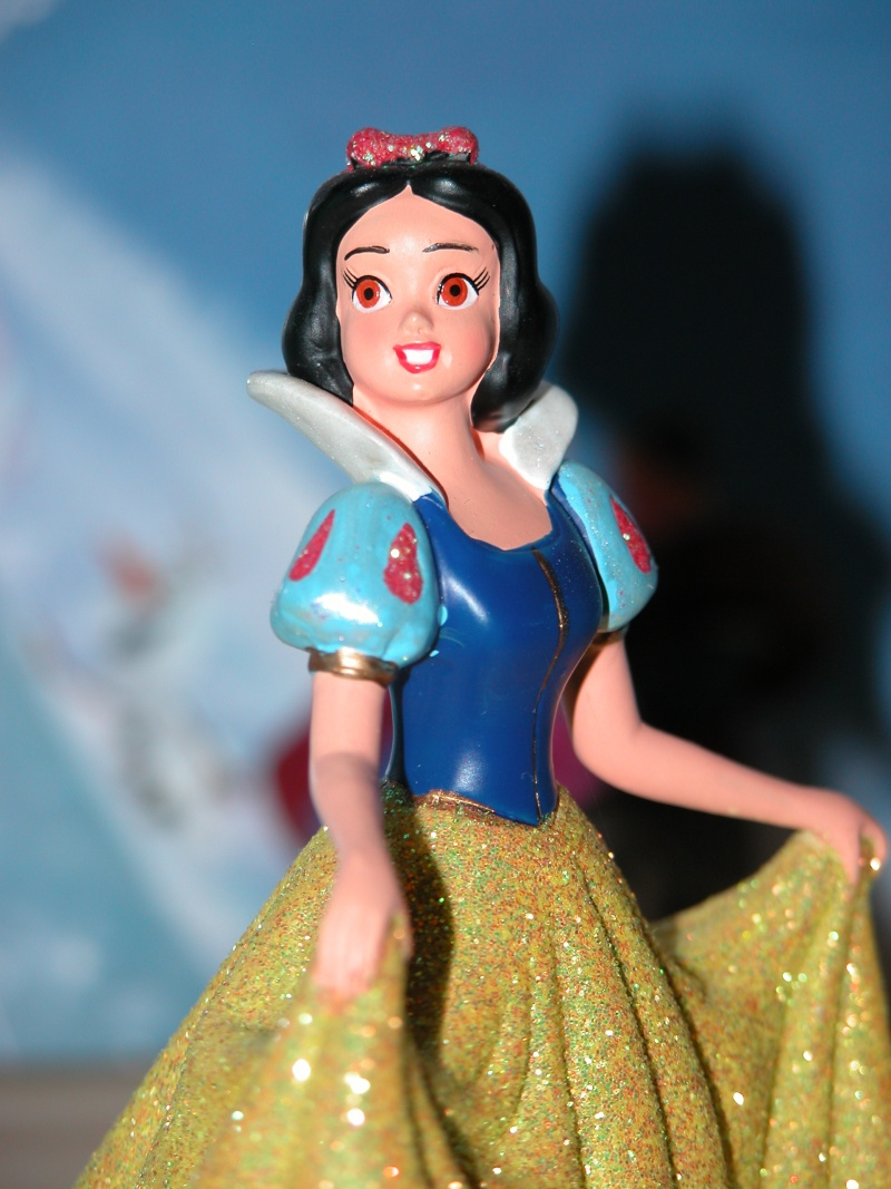 Figurines Disneyland Paris - Page 2 Dscn0712