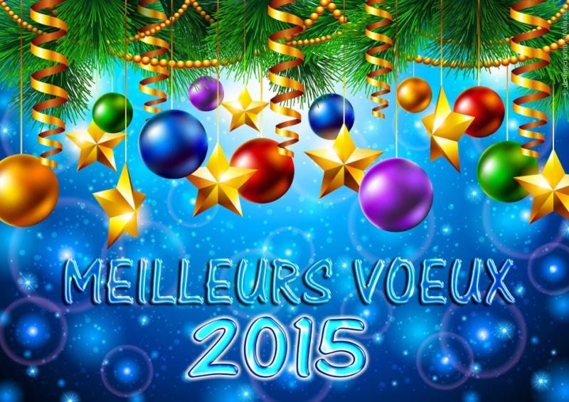 2015 Meille11