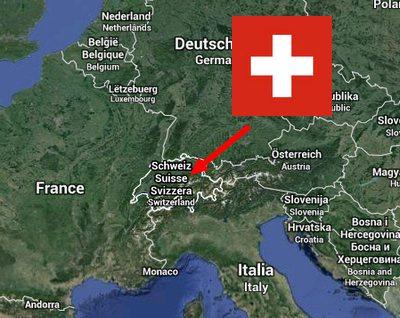 la poule Suisse Origin15