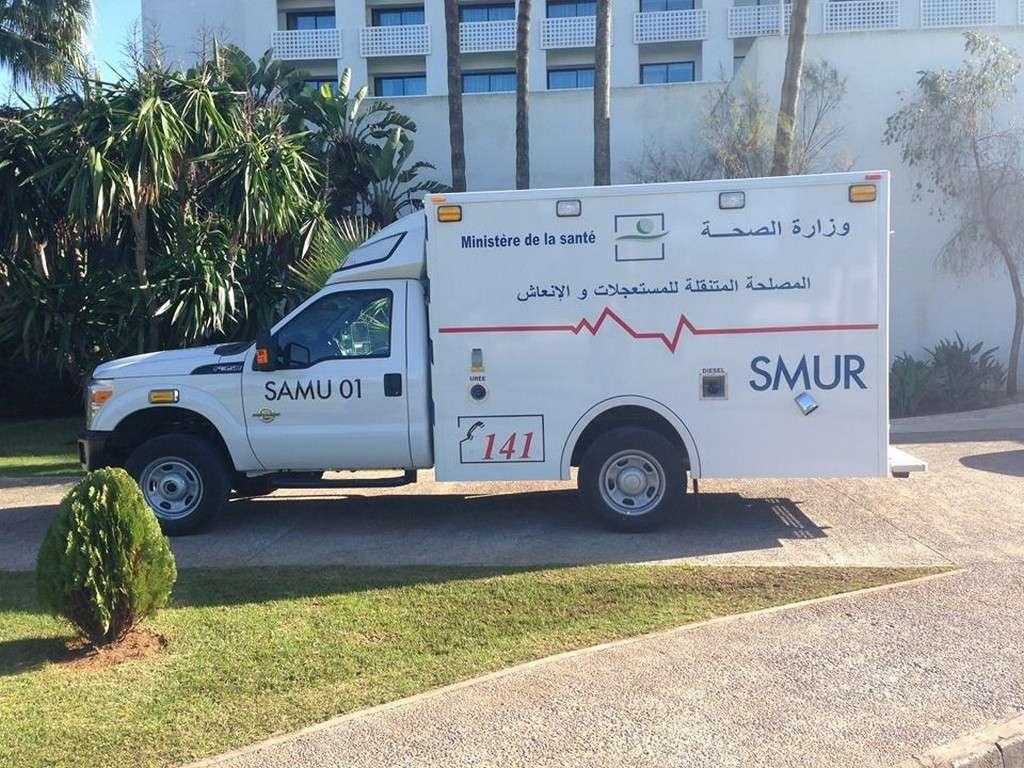 Services Ambulanciers Mobiles d'Urgence et de Réanimation (SAMU / SMUR) 10177210