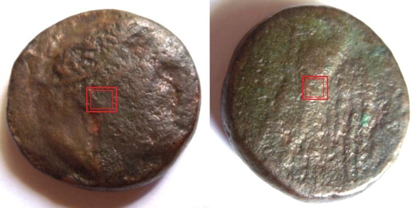Monnaie ptolémaïque Egypte Lagide Expert10