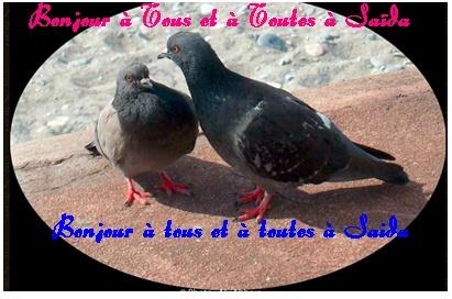 Le Bonjour du 24 août 2014 Bonjou11