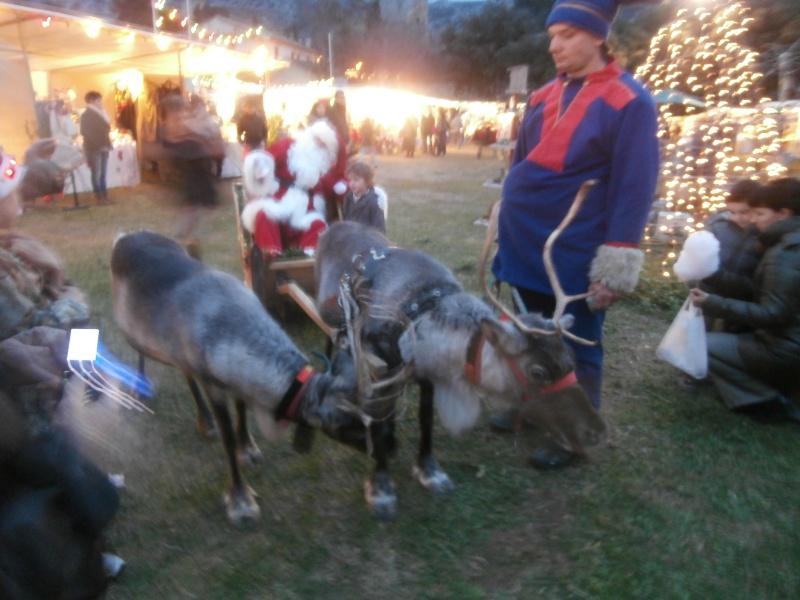 Mon premier marché de Noel en provence Pc140613