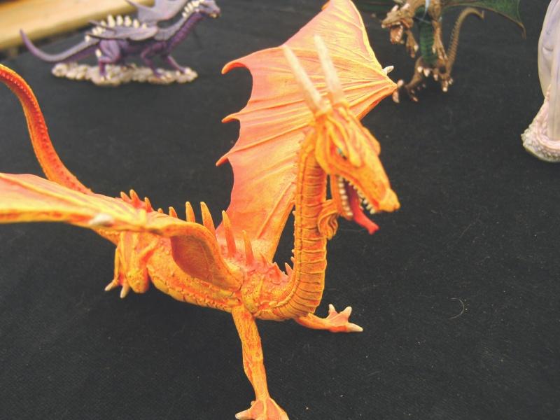 meine Drachen Pict0025