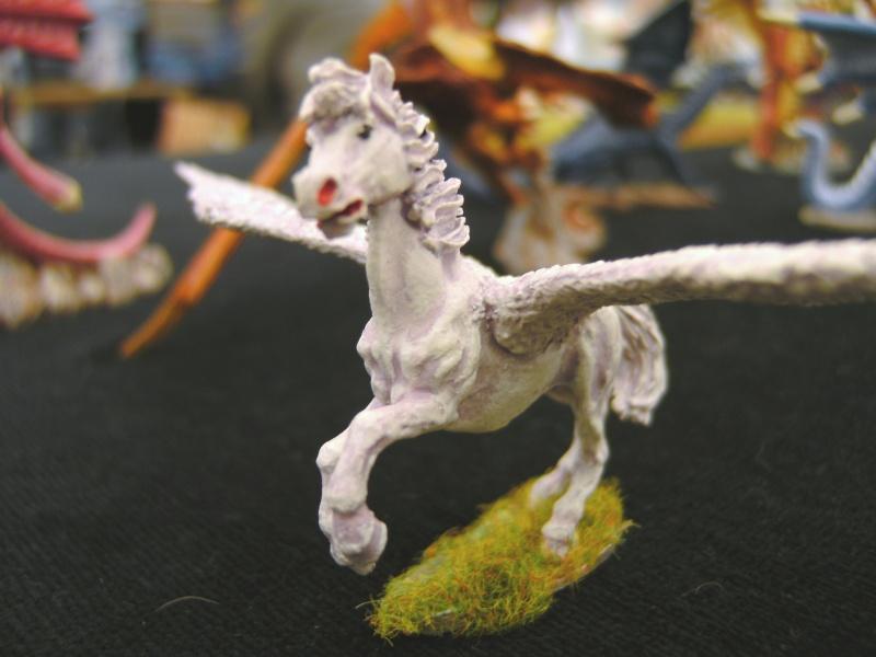 meine Drachen Pict0032