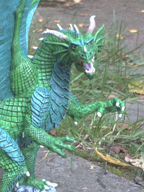 meine Drachen Rimg0012