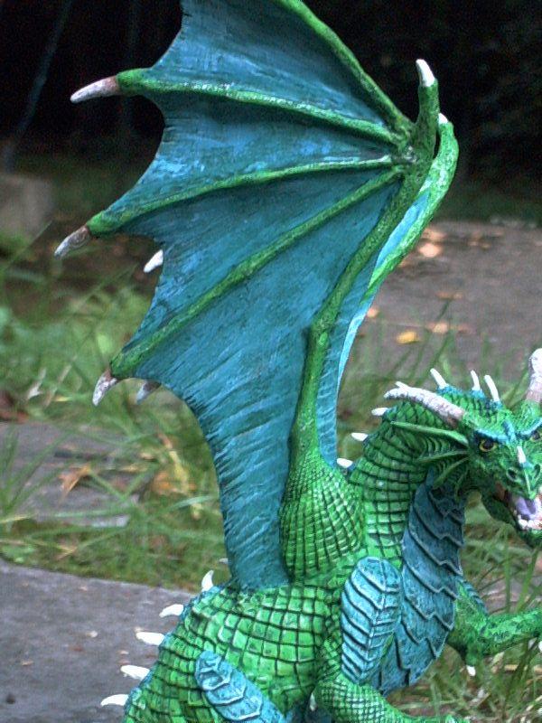 meine Drachen Rimg0013