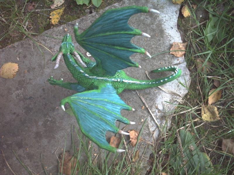 meine Drachen Rimg0017