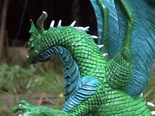 meine Drachen Rimg0020