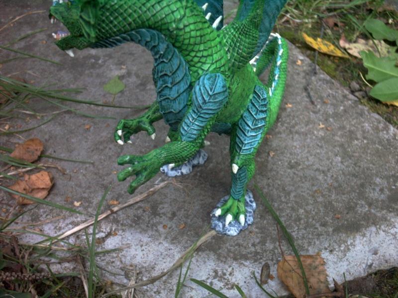 meine Drachen Rimg0025