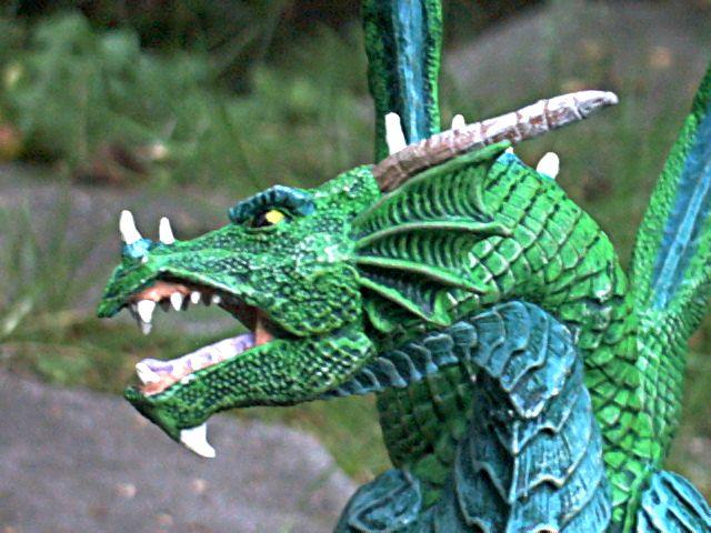 meine Drachen Rimg0028