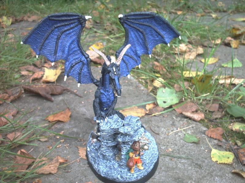 meine Drachen Rimg0031