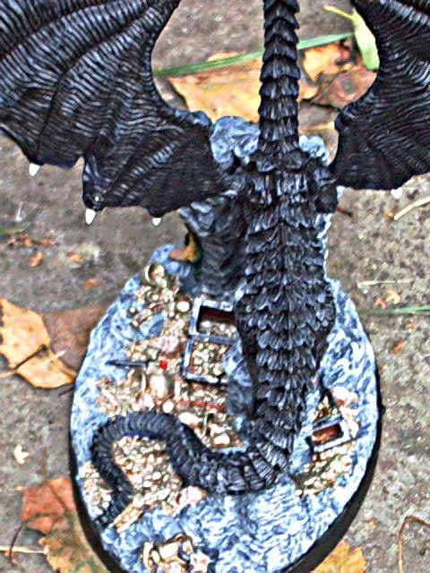 meine Drachen Rimg0033