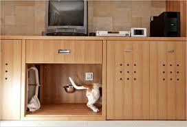 Chat et chien et petit logis Chien510