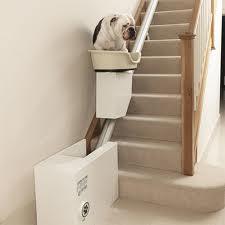 Accessoires de mode pour chiens, pour ou contre ?  - Page 6 Images13