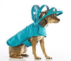 Accessoires de mode pour chiens, pour ou contre ?  - Page 6 Images26