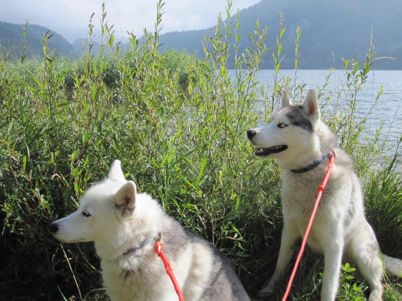 Saskia et Jiro, partie 2 - Page 2 134