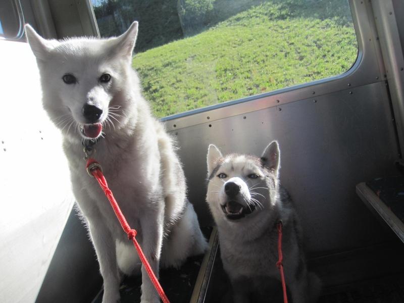Saskia et Jiro, suite 438