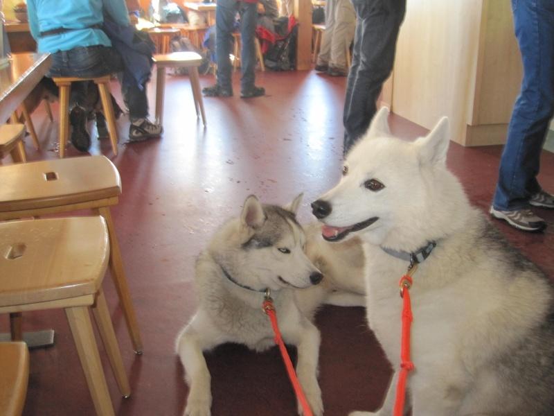 Saskia et Jiro, suite 5711