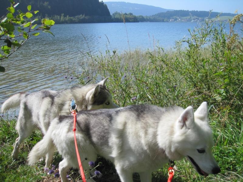 Saskia et Jiro, partie 2 - Page 2 632