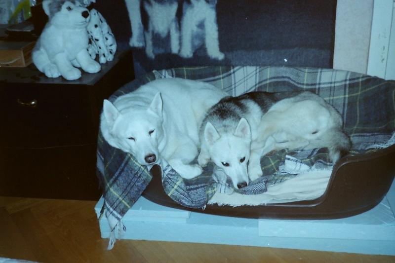 Saskia et Jiro Pict0035