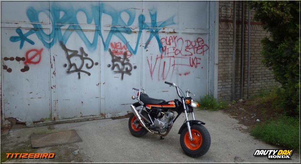 "Le HONDA "" CY50 NAUTY DAX "" de Titi (nouveau projet) Ti000223"