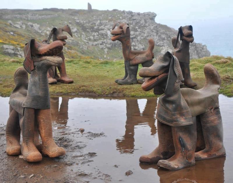 Les bottes chiens  52937010