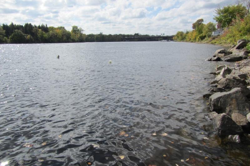 Rapport de plongée - Rivière des Outaouais et Gatineau - 3 octobre 2014 10210