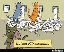 Es gibt nix was es nicht gibt Fitnes10