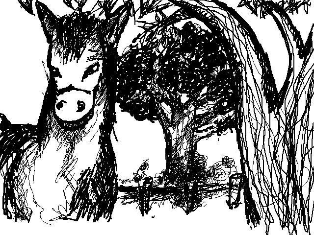 """Tout et n'importe quoi ! """"Floodez moi"""" - Page 4 Ane10"""
