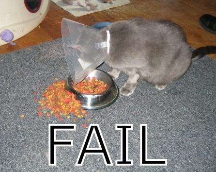 FAIL Fail10