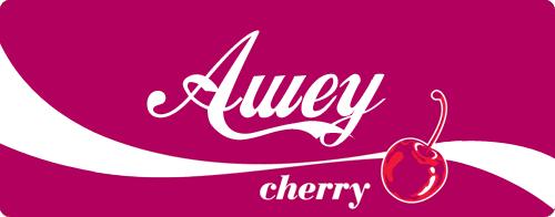Présentation d'Awey. - Page 6 Aweych10