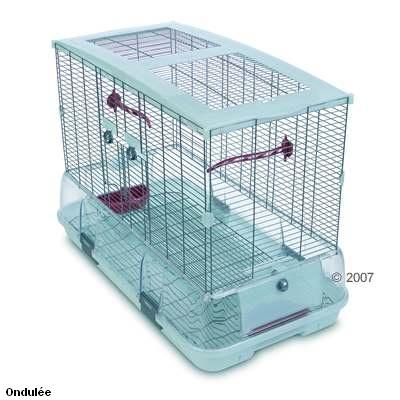 Dimensions pour trois perruches Cage_b10