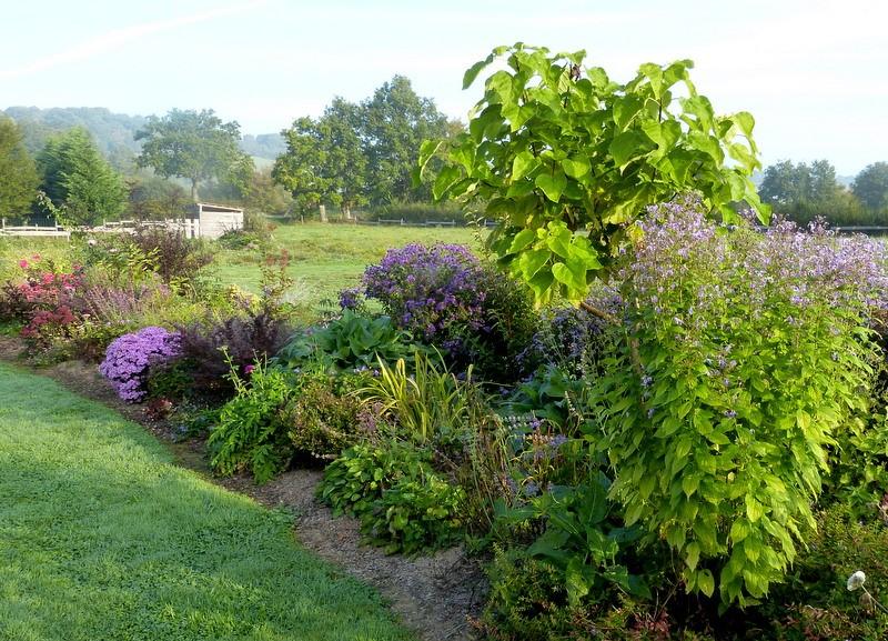 Le jardin de Cassandra - Page 2 P1320550