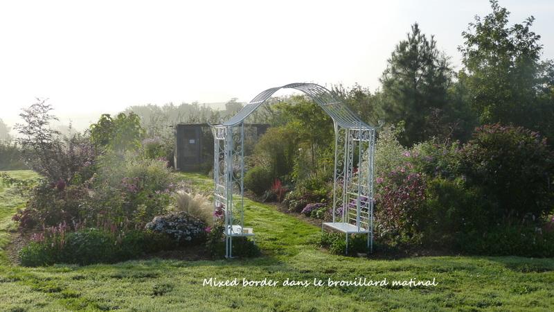 Le jardin de Cassandra - Page 2 P1320624
