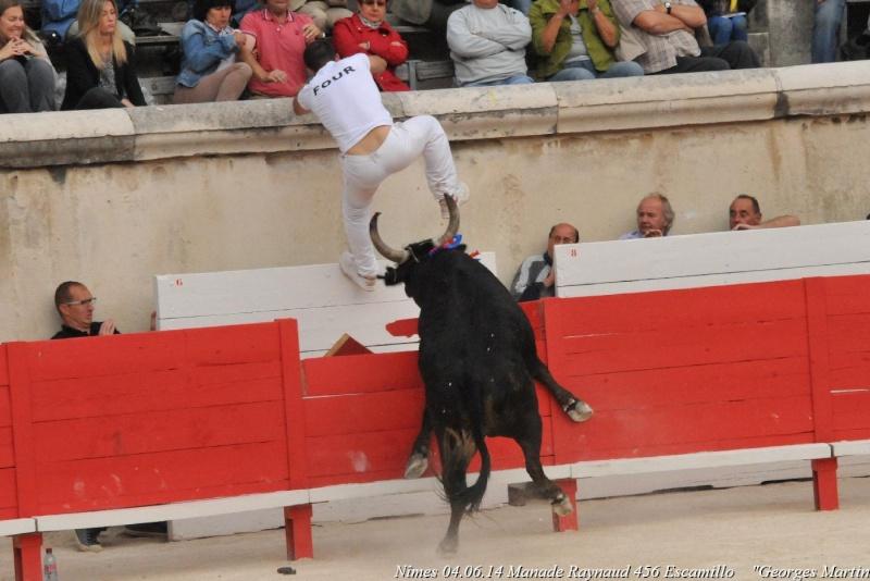 Nîmes 04.06.14 Names_11