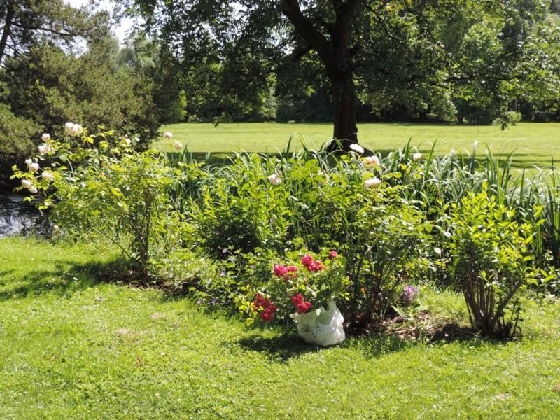 13-14-15 juin  Fête des plantes à Hex  (Limbourg) 2014_507