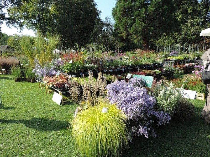 Foire aux plantes abbaye d'aywiers  3-4-5 octobre 2014_924
