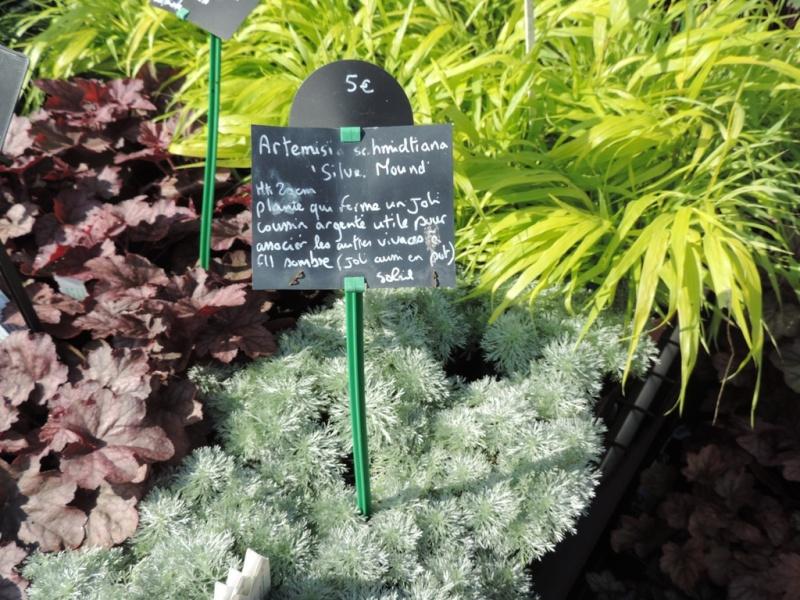 Foire aux plantes abbaye d'aywiers  3-4-5 octobre 2014_928
