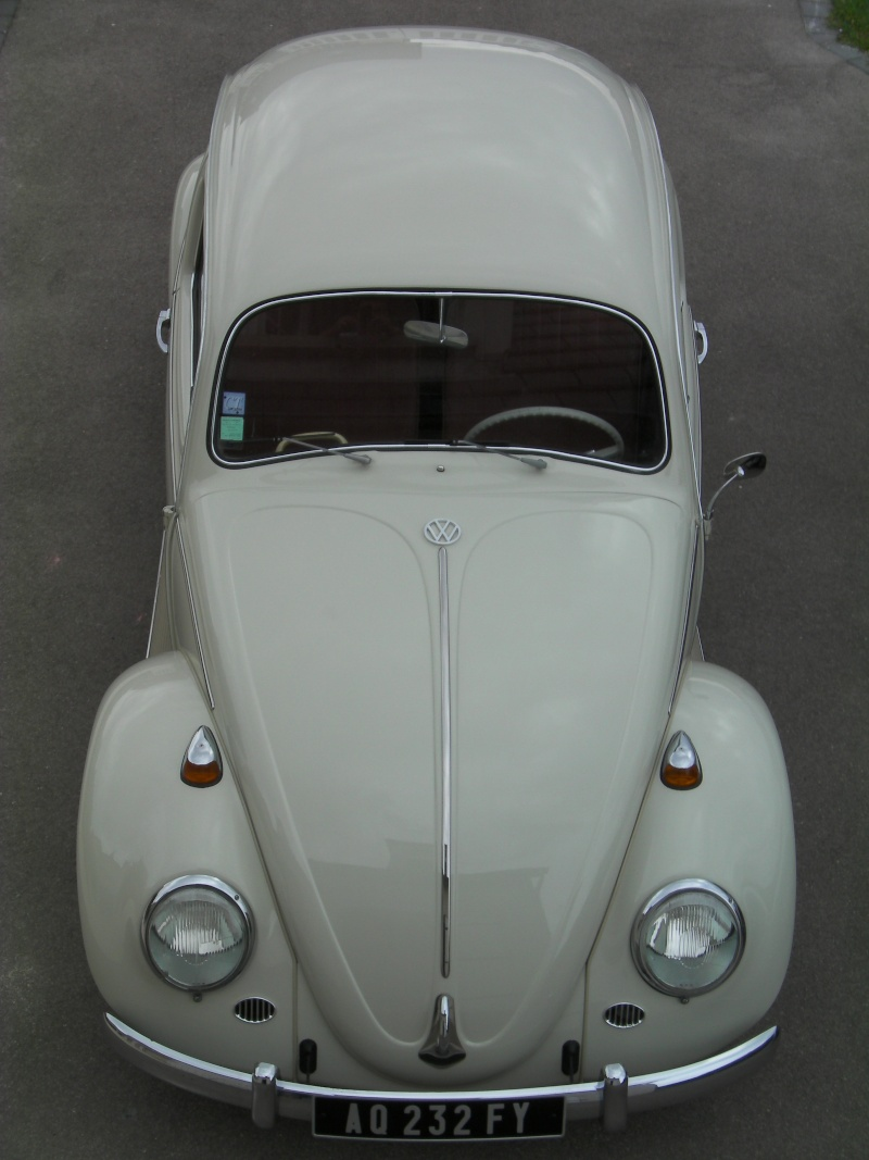 1964 Pearl White Sany0212