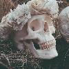 Parle-moi de zombies, shalalalalaa | C. Riggs Image_15