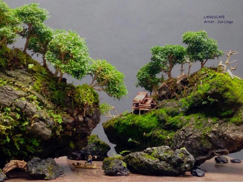 Dwarf Murraya Landscape. 10444610