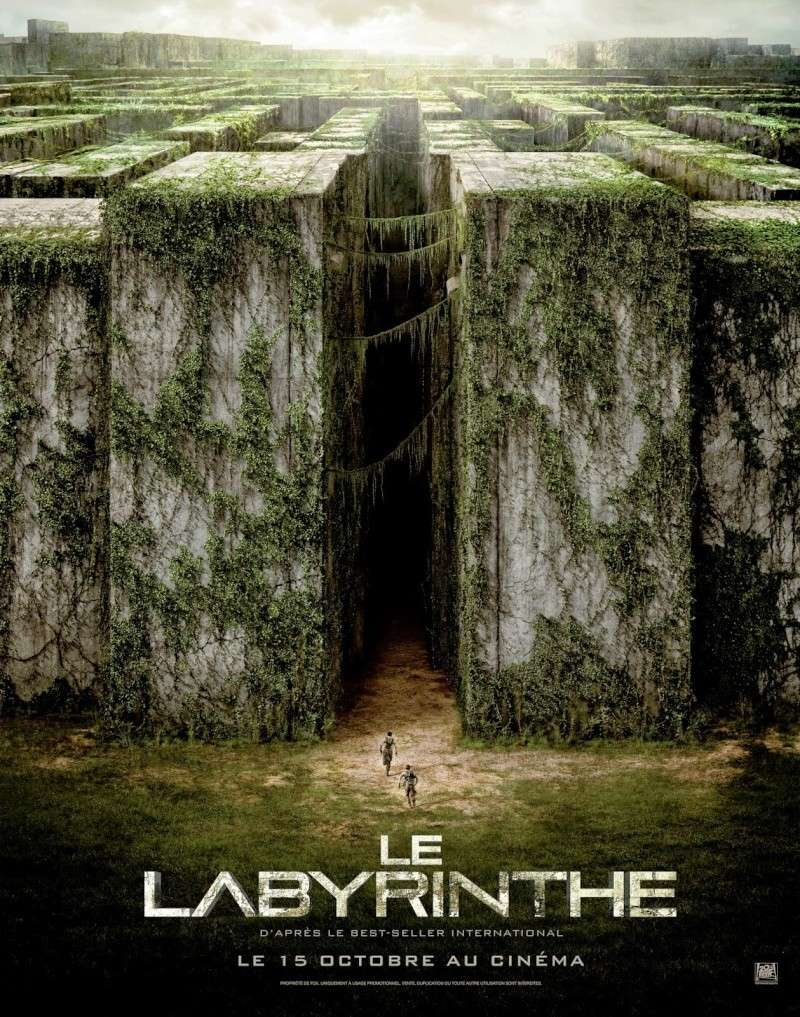 Le Labyrinthe (The Maze runner) Le-lab10