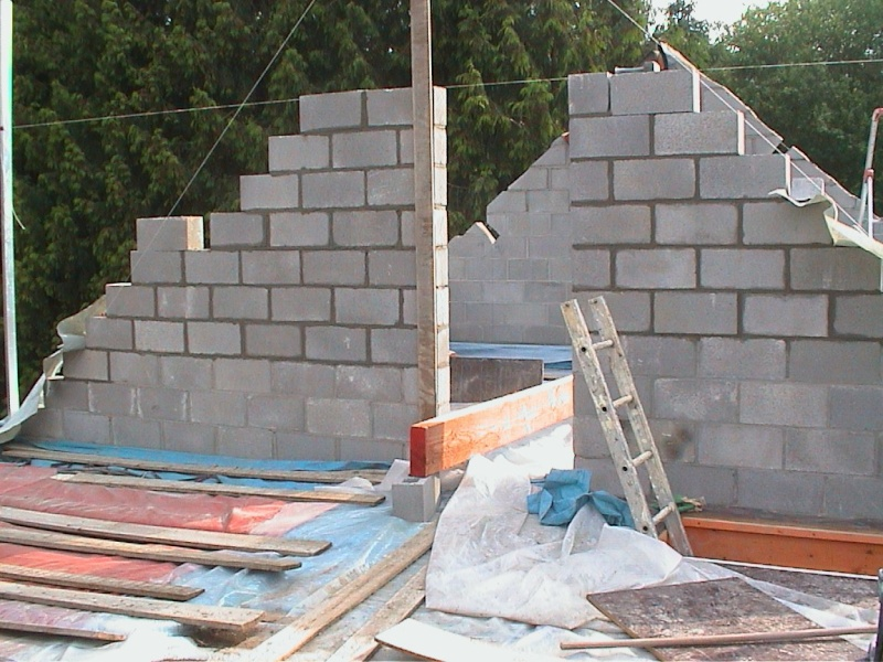 Construction de la maison de mon fils - Page 6 2183-d10