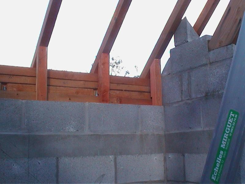 Construction de la maison de mon fils - Page 6 2326-d10