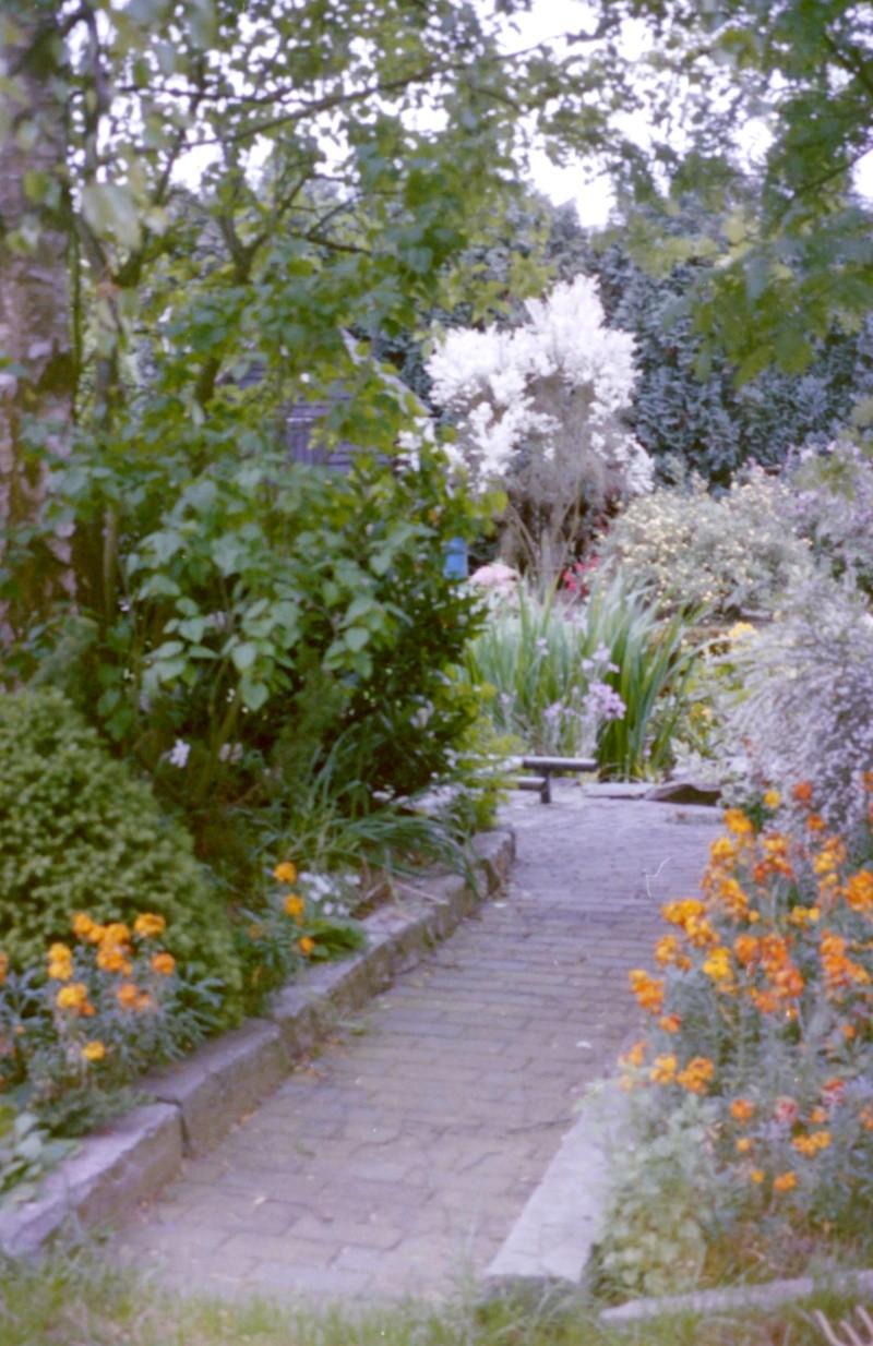 Jardinage en tout genre - Page 2 4-13-210