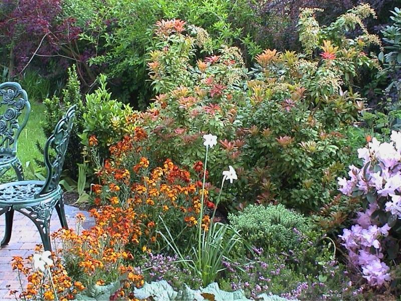 Jardinage en tout genre - Page 2 Bistro10