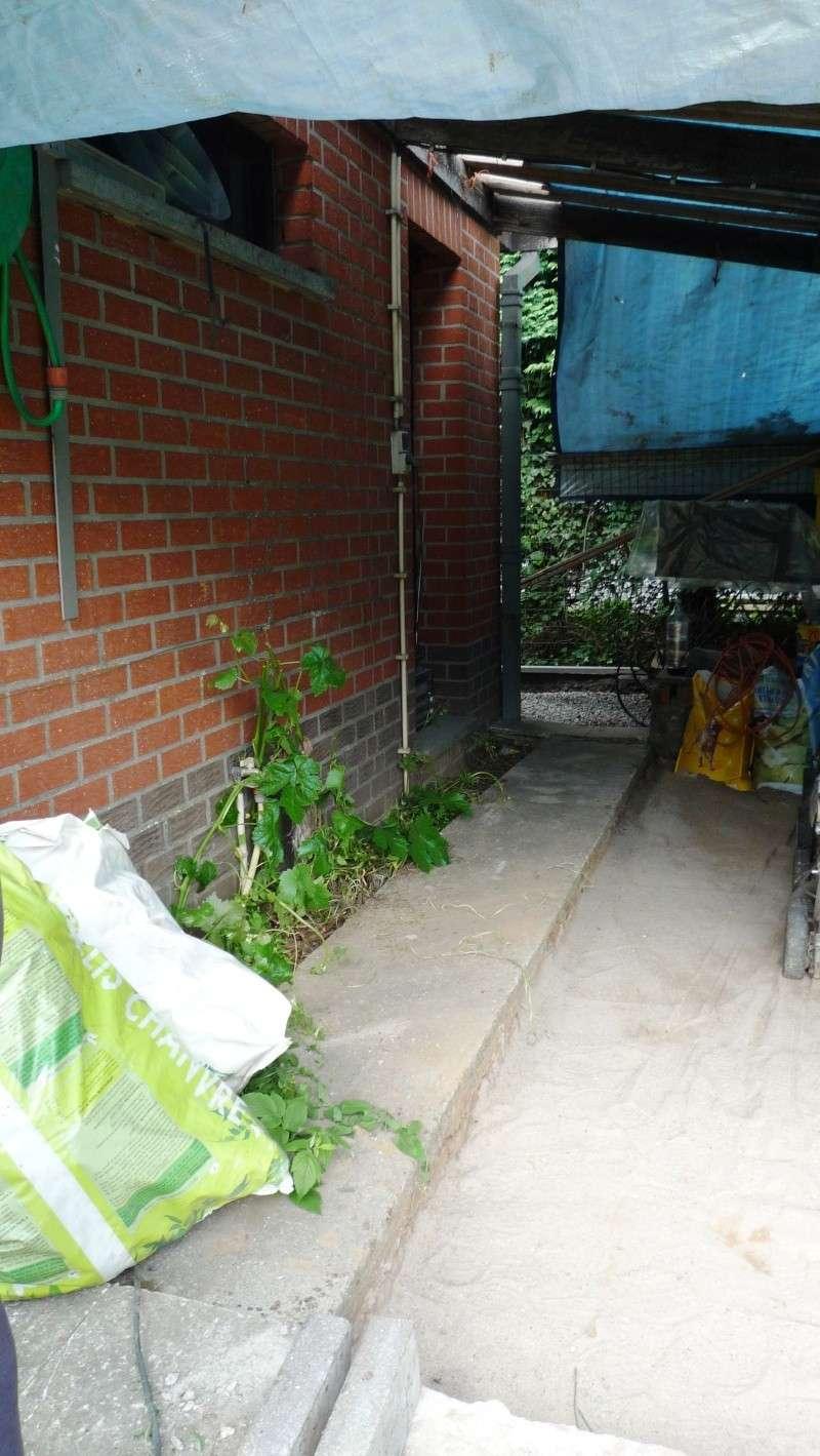 Abri de jardin/Annexe atelier P1010911